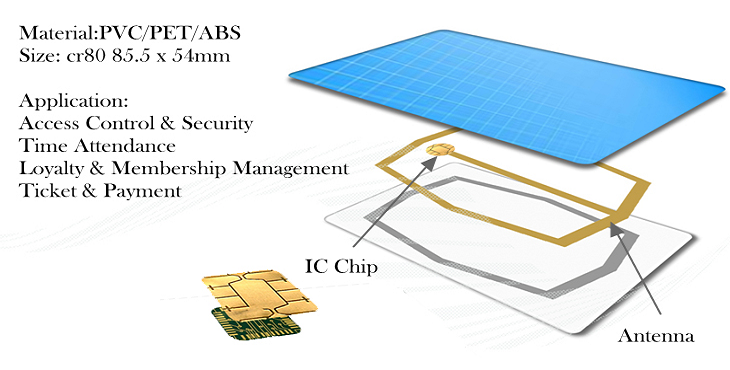 Membership Chip Card Structure